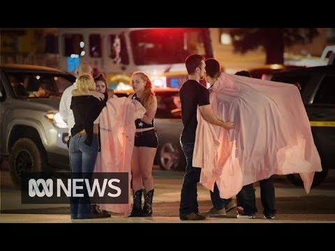 California bar gunman who killed 12 people identified as former US Marine | ABC News