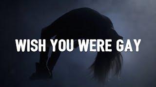 Billie Eilish - wish you were gay (Lyrics) Video