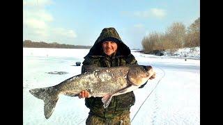 Зимняя рыбалка на толстолобика! Секреты ловли!
