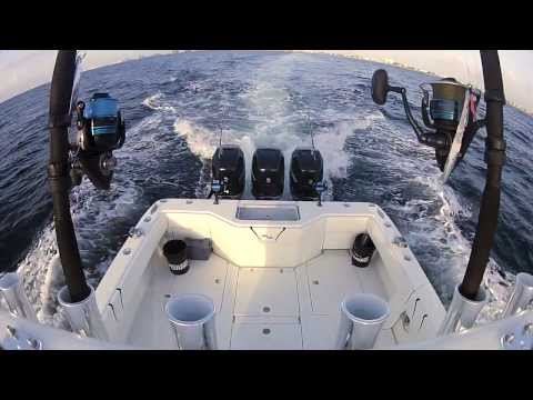 Mercury Verado - Florida Sport Fishing TV