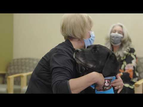 Providence HealthBreak - PAWS Pet Therapy