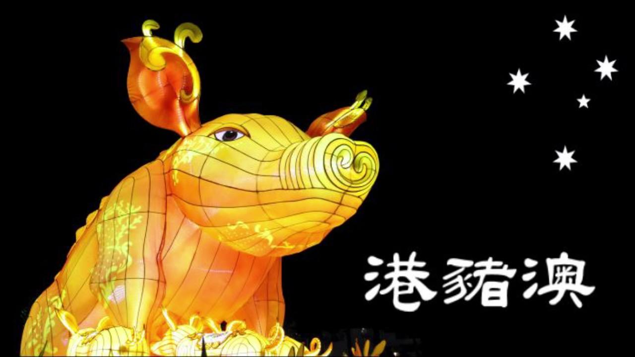 Image result for 共業:港豬噢~