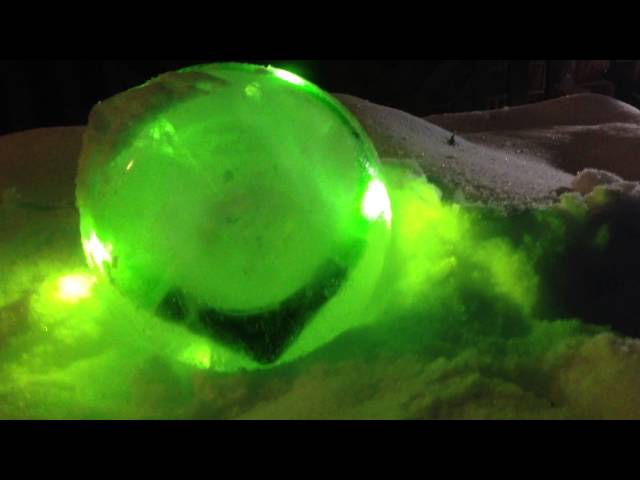 Glowdoggie LED collar - On the rocks