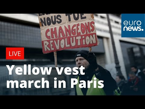 French yellow vest