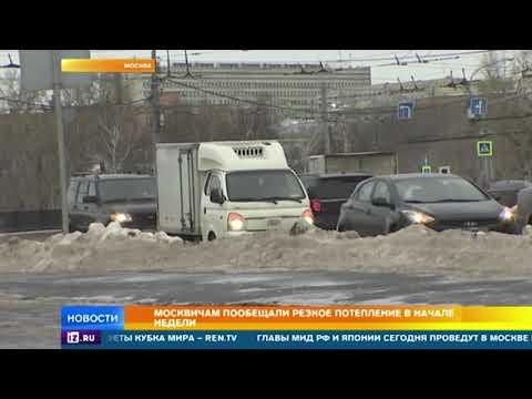 Москвичам пообещали сильное потепление в начале недели