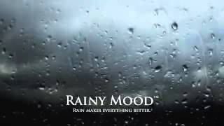 Social Conscience - Rainy Mood c.Step [HQ]