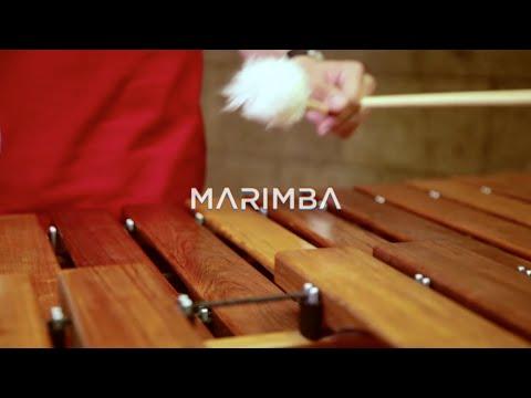 Resonancias, la armonía del sonido: Marimba