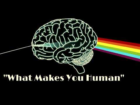 AP Psychology: Parts of the Brain Song - YouTube