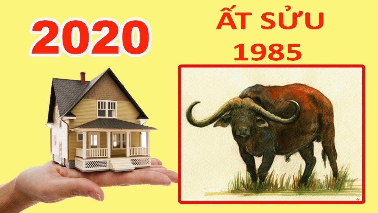 Xem Tuổi ẤT SỬU 1985 Có Xây Được Nhà Giàu Sang Phú Quý Năm 2020