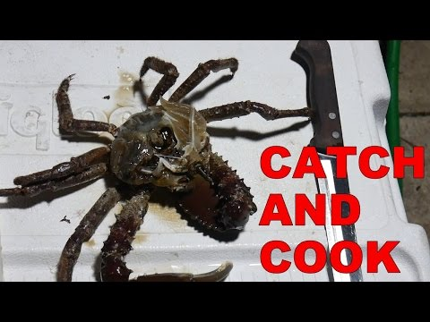 Catch And Cook - Key West Scavenger Soup