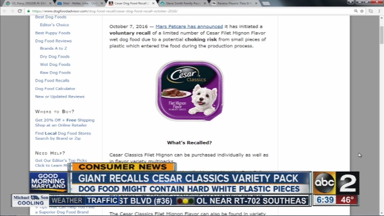 Mars Petcare Recalls Ceaser Filet Mignon Flavored Dog Food Youtube