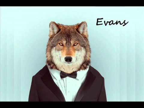 Disaster Mix (Evans)