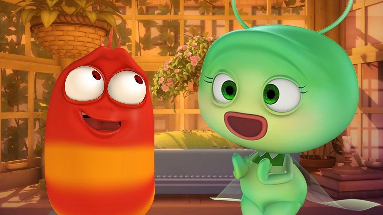 LARVA - RED'S BROKEN HEART | Cartoon Movie | Cartoons For Children | Larva Cartoon | LARVA Offi