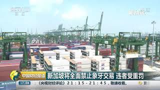 [中国财经报道]新加坡将全面禁止象牙交易 违者受重罚| CCTV财经