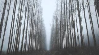 Gracious - Ben Howard