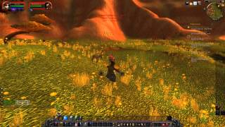 World of Warcraft Keeping The Dogs At Bay Quest HD