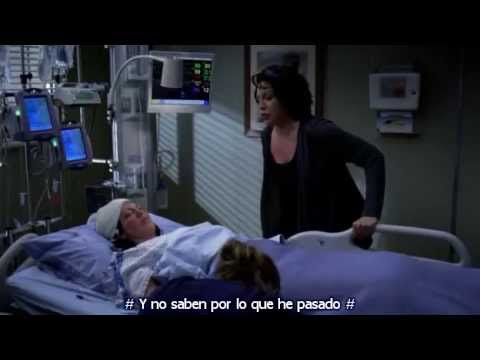 Greys Anatomy - Callie Torres - Sara Ramirez  - The Story