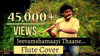Jeevamshamayi Flute Cover | Theevandi | SreeRam ST