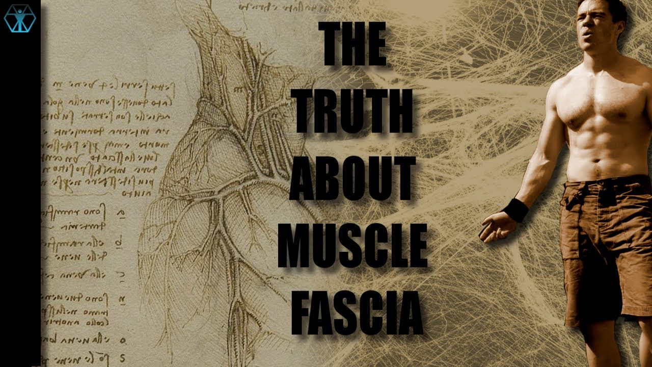 Is Fascia Another Communication System Inside our body?
