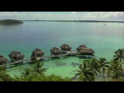 Miller Time Tahiti.mov