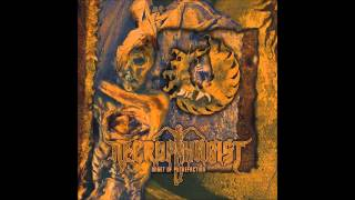 Watch Necrophagist Fermented Offal Discharge video