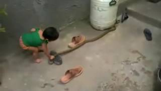 Kids Funny Video ★ Funny Videos Of Kids ★ Funny Videos For Kids ★ Funny Baby Fails   YouTube