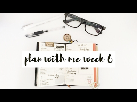 Plan With Me Week 6 (Travelers Notebook Planner)