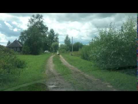 Главная улица деревни Гороховище, Псковская область