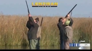 Hunters kill immigrated birds despite ban for flue bird thumbnail