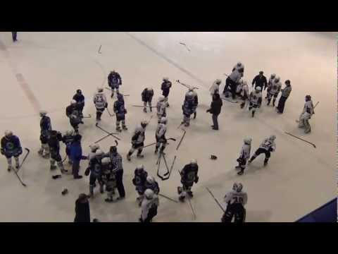 Драка детских хоккейных команд.