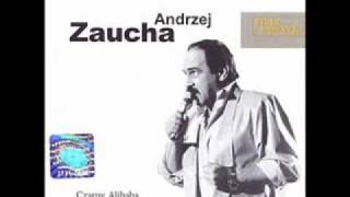 Andrzej Zaucha - Wieczór nad rzeką zdarzeń
