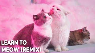 Learn To Meow (Remix) [学猫叫] - Wengie, XiaoPanPan, XiaoFengFeng (Cover By Munchkin)