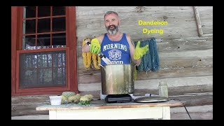 How to dye yarn with Dandelions.