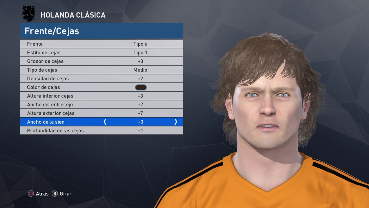 Arie HAAN pes 2017 Classic Holland