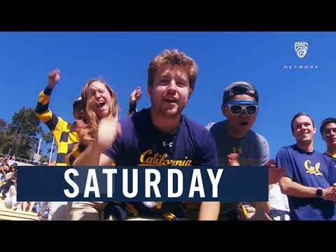 cal-football:-bears-gear-up-to-host-uc-davis-in-season-opener-on-pac-12-network