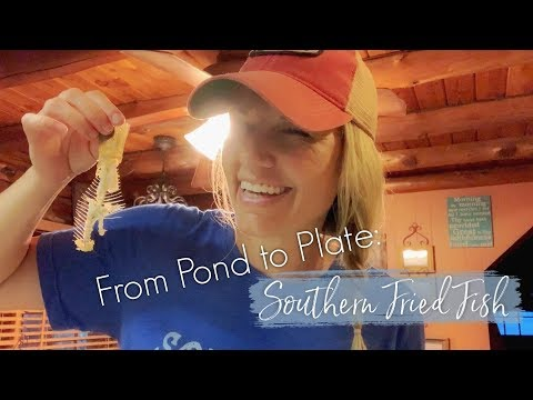From Pond To Plate : A Southern Fried Fish Tale