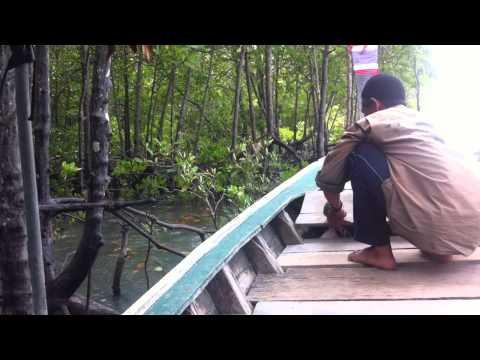 Thailand, koh lanta, feeding the monkeys!