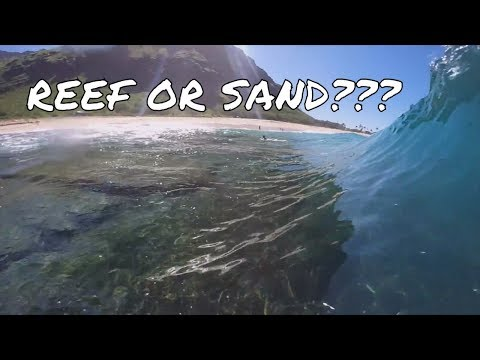 Reef OR Sand Break Bodyboarding!!! Choices