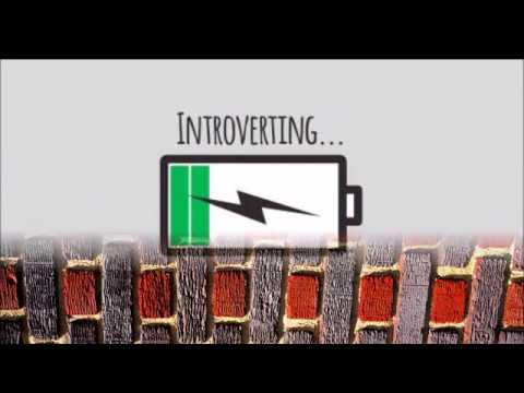 DisorderlyZen Introvert Hangover