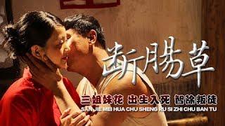 电影 [ 断肠草 ] 谍战悬疑剧丨Gelsemium elegans - Suspense/Spy Drama 1080P
