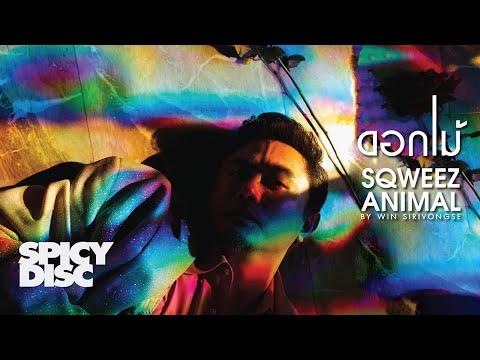 Sqweez Animal - ดอกไม้ | (OFFICIAL MV) - วันที่ 14 Jan 2020
