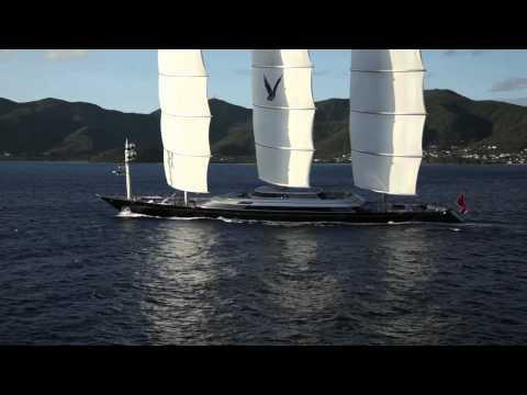 Maltese Falcon 2011