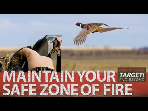 Wisconsin Department Of Natural Resources - Swinging On Game - Pheasant