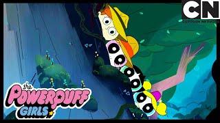 Самая крутая девочка в школе Суперкрошки Cartoon Network