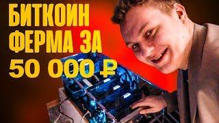 БИТКОИН ФЕРМА за 50 000 рублей