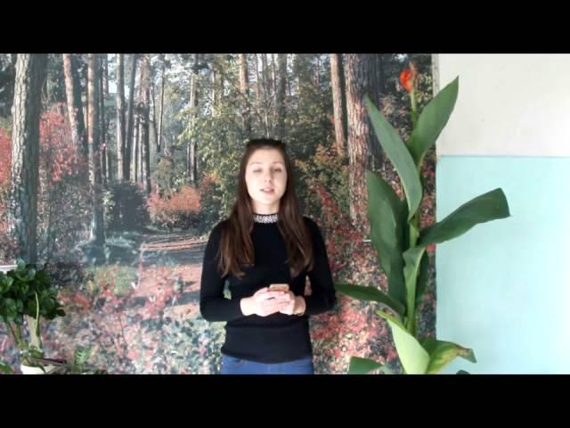 Изображение предпросмотра прочтения – АнастасияЛакеева читает произведение «Дачи осенью» В.Я.Брюсова