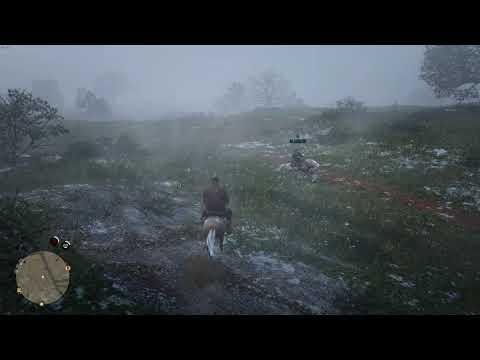 Red Dead Redemption II | Shot with GeForce