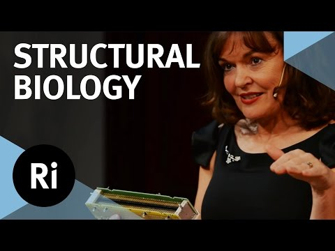 A New Phase for Structural Biology - with Carol Robinson