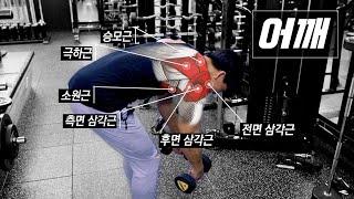 태평양 어깨를 만드는 필수 운동 8가지!  (머슬아나토…