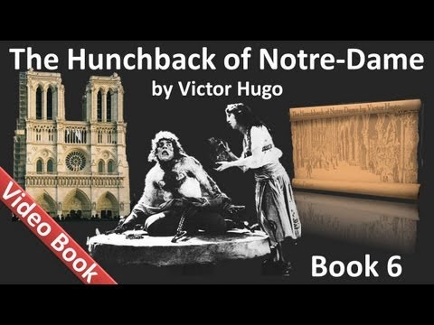 Book 06 - The Hunchback of Notre Dame Audiobook by Victor Hu